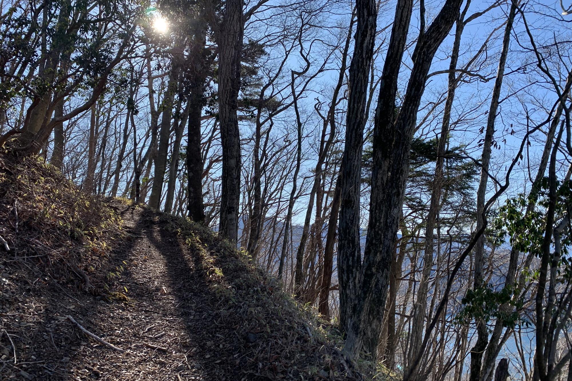 右側が切れ落ちる本栖湖を囲む稜線のトレイル